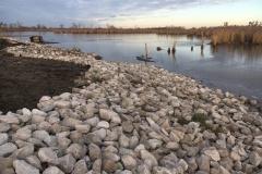 Collavino-looking-towards-wetland-north