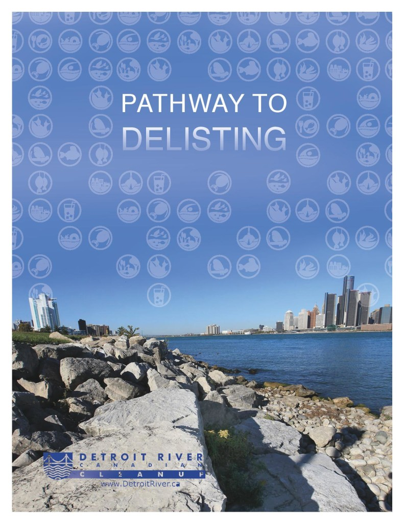 DRCC_Pathway_Covers2014-page-001