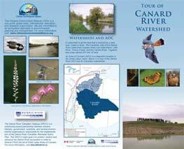 Tour Canard River!