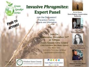 phragmites-expert-panel-erca-event