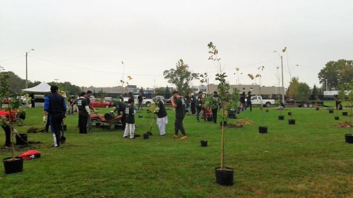 Bush Park Planting