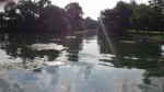 Turkey Creek into DR 2